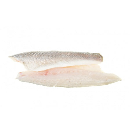 SEA BASS - 2 FILLETS