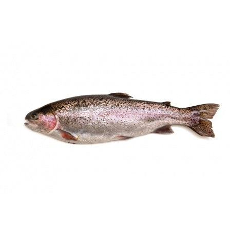 RAINBOW TROUT - WHOLE FISH