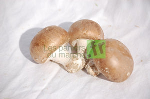 Champignons de Paris blonds - 500 g