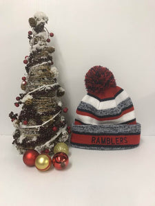 Striped Rambler Pom Pom Knit Hat