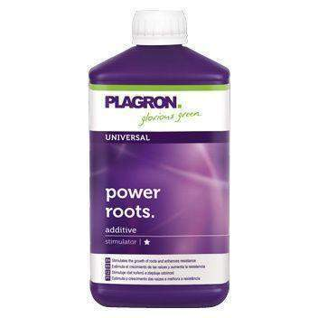 Plagron Power Roots-Tidy Hydro