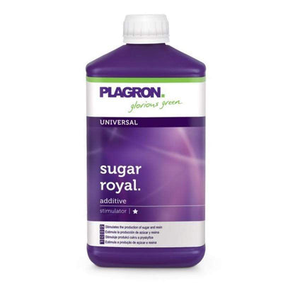 Plagron Sugar Royal-Tidy Hydro