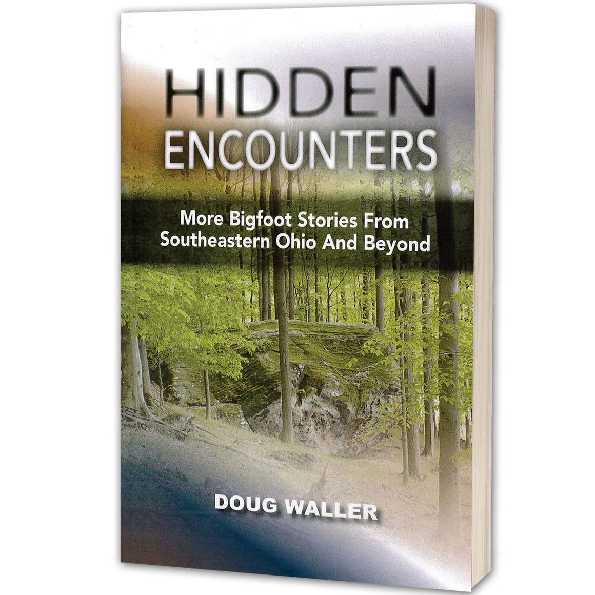 Hidden Encounters