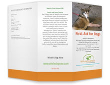 WholeDogNow Canine First Aid Kit WDN