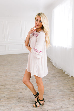 Embroidered Mini Shirt Dress