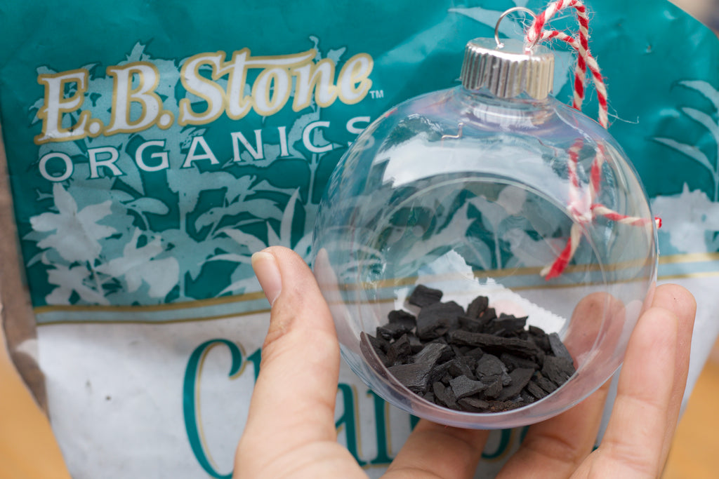 Succulent Holiday Ornaments DIY GUIDE