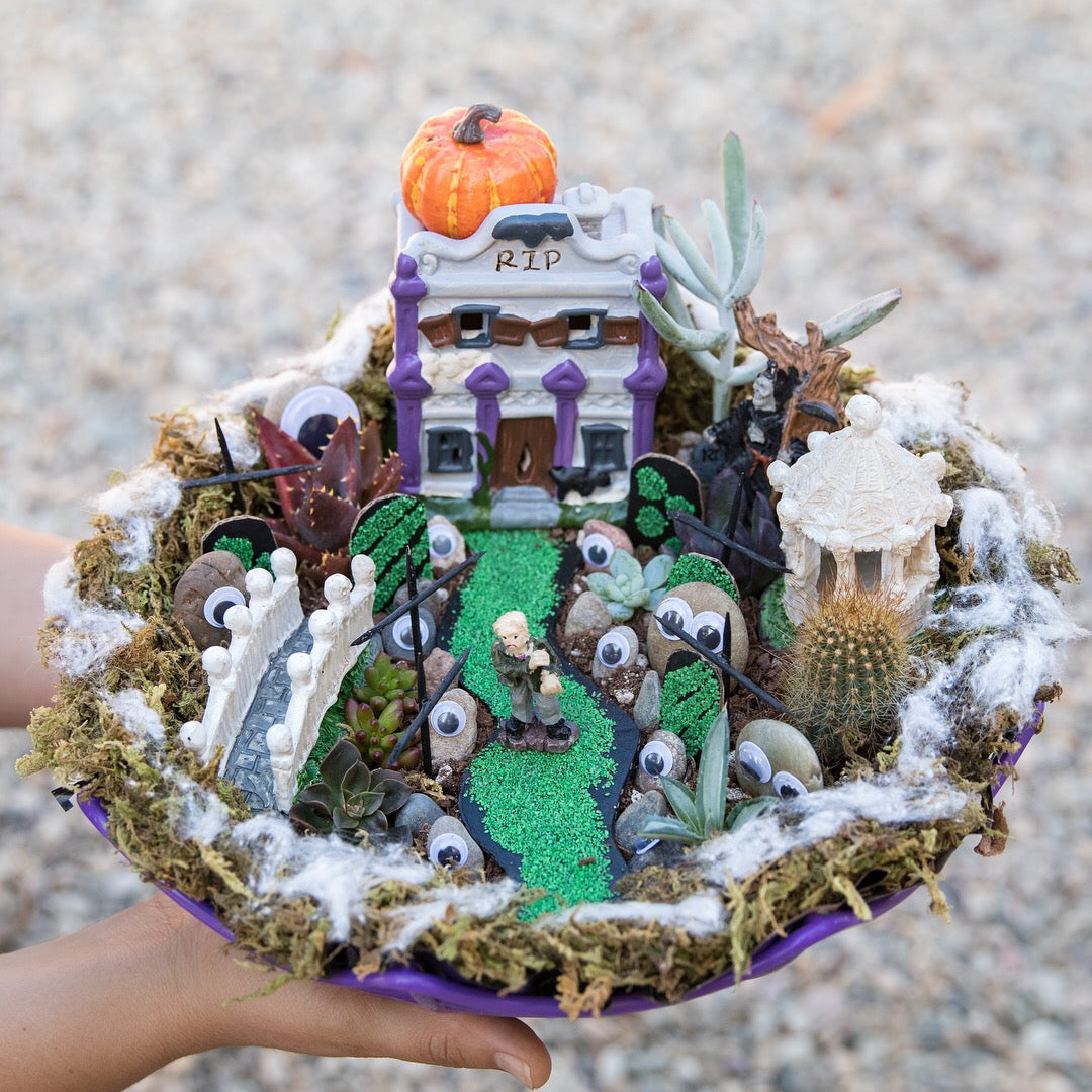 DIY fairy garden by succy crafts