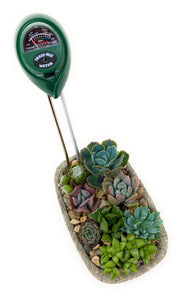 Moisture Meter - for sale by Succy Crafts