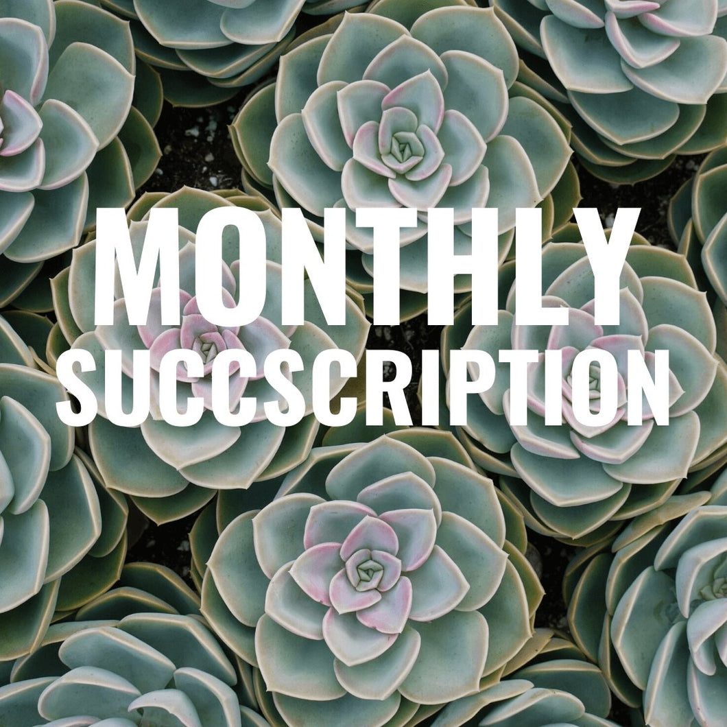 Monthly Succscription - for sale by Succy Crafts