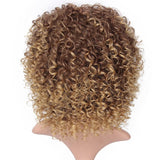 Brown Synthetic Curly Wigs for Women 4 Colors Ombre Short Afro Wig