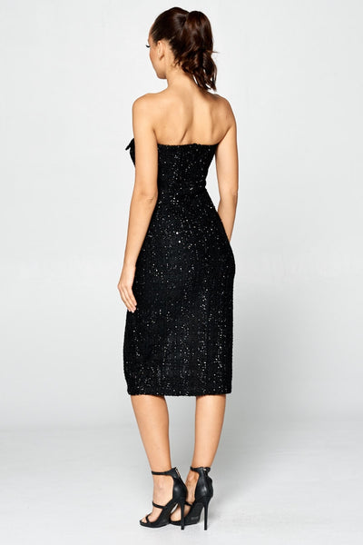 Sparkle Me Pretty Dress