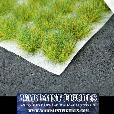 WPF - 120 x 6mm Spring Self Adhesive Static Grass Tufts