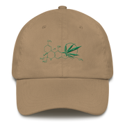 Science Dad hat