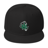 The Healing Snapback Hat