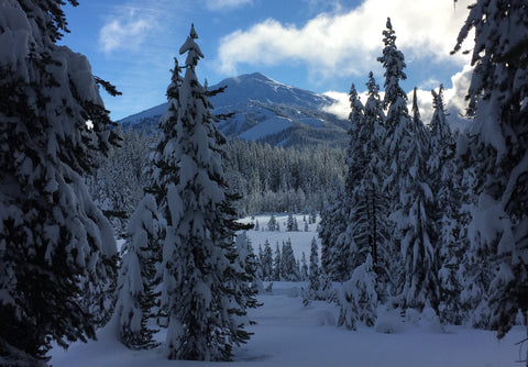 Mt Bachelor outside of Bend, Oregon, covered in snow