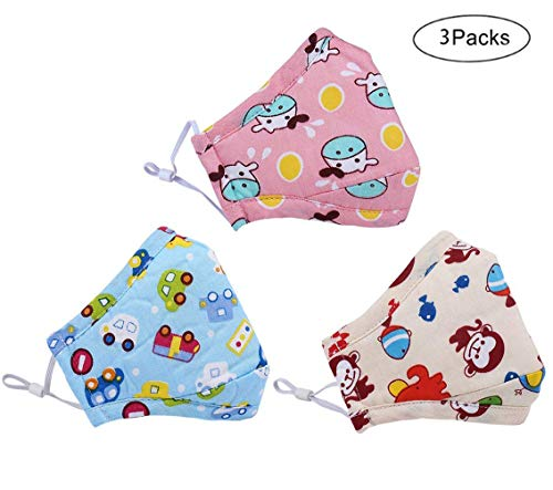 Kids PM 2.5 Anti Dust Mask, N95 Respirator Face Mask