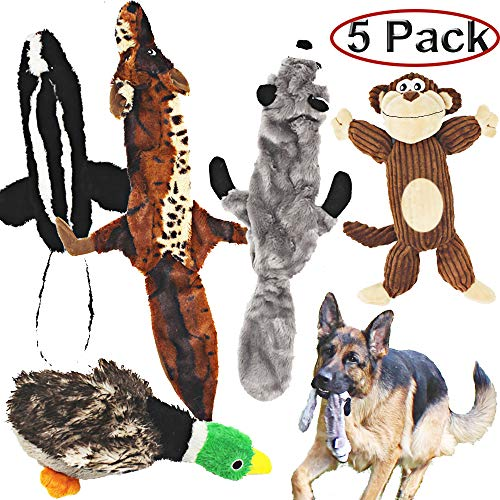 Jalousie 5 Pack Dog Toys, 3 squeaky no stuff toys, 2 plush stuffing