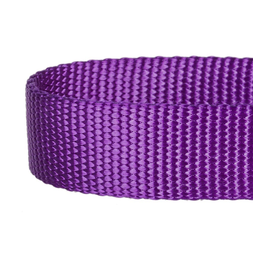 "Blueberry Pet 32 Colors Classic Dog Collar, Dark Orchid, Medium, Neck 14.5""-20"", Nylon Collars for Dogs"