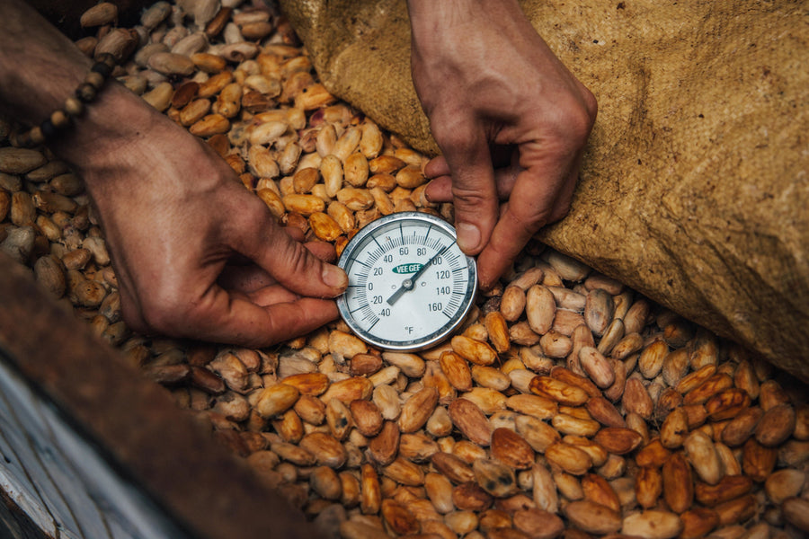 The Secret To Quality Cacao