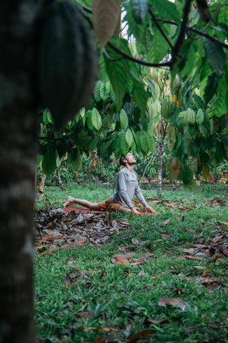 Yoga In Cacao Forest