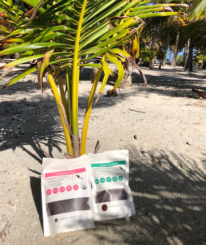 Boundless Belize Ceremonial Cacao On Beach