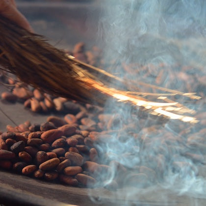 Lightly Toasted Raw Cacao Beans