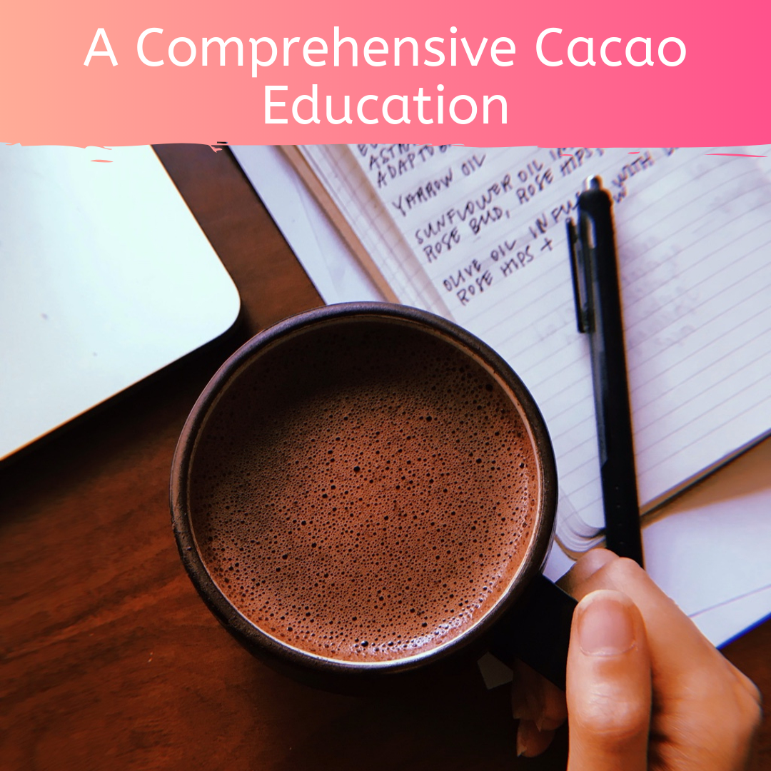 Full Course: A Comprehensive Cacao Education for Cacao Ceremony and Holistic Health by Firefly Chocolate