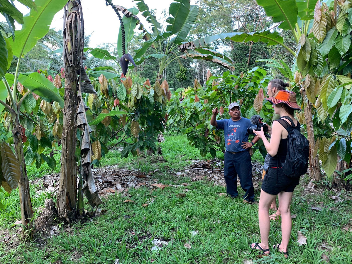 Gather @ The Source | Cacao Farm & Ceremony Immersion in Belize for Cacao Ceremony and Holistic Health by Firefly Chocolate