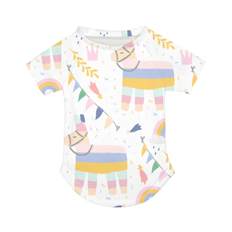 Rainbows and Rainbow Ponies Doggie Tee