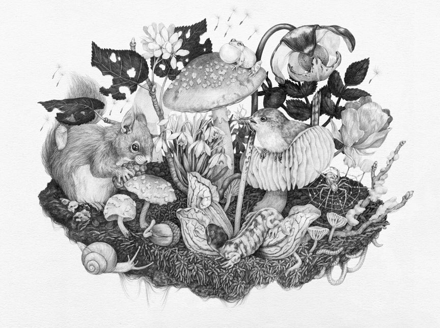 Zoe Keller - Mushroomscape