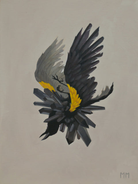 Miranda Meeks - Yellow Shouldered Blackbird