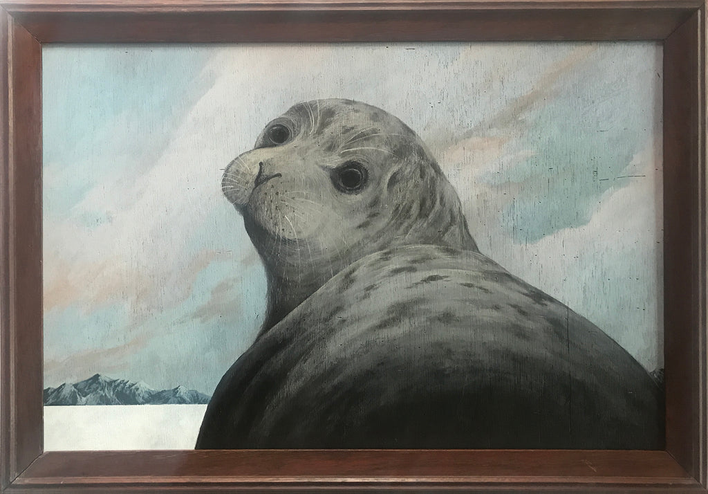 Amy Ruppel - Seal