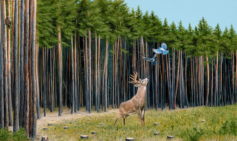 Limited Edition Print- The Messengers by Josh Keyes