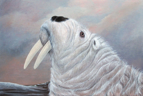 "Amy Ruppel - ""Polarus"""