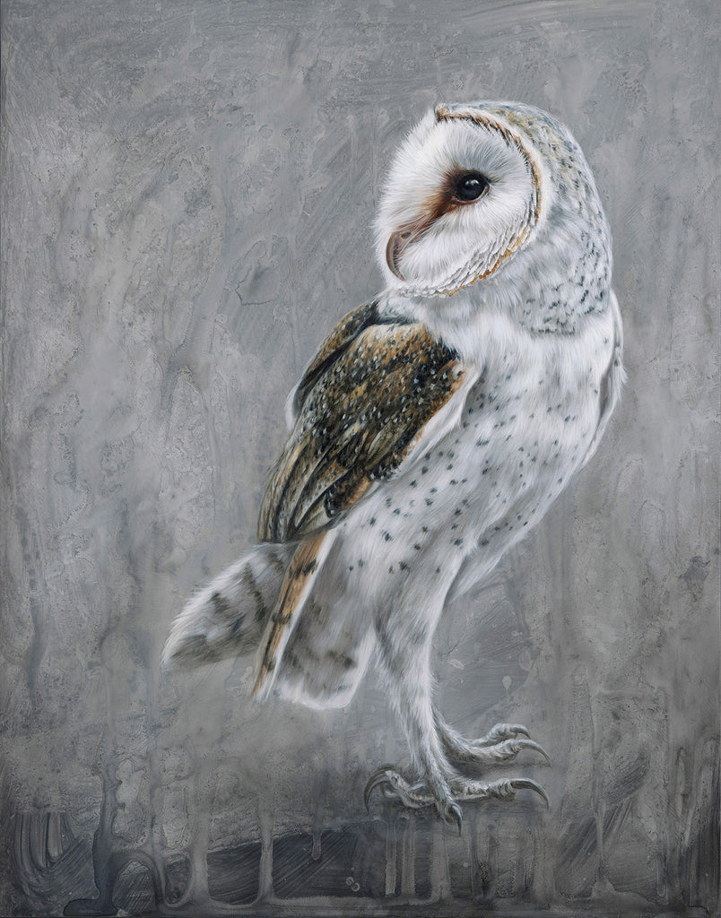 "Alex Louisa - ""Barn Owl"""