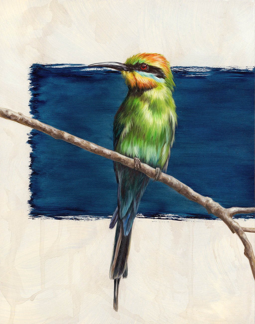 "Alex Louisa - ""Rainbow Bee Eater"""