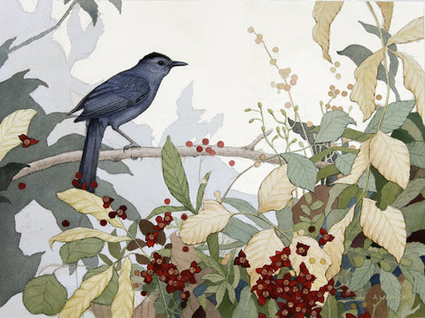 "Alex Warnick - ""Autumn Gray Catbird"""
