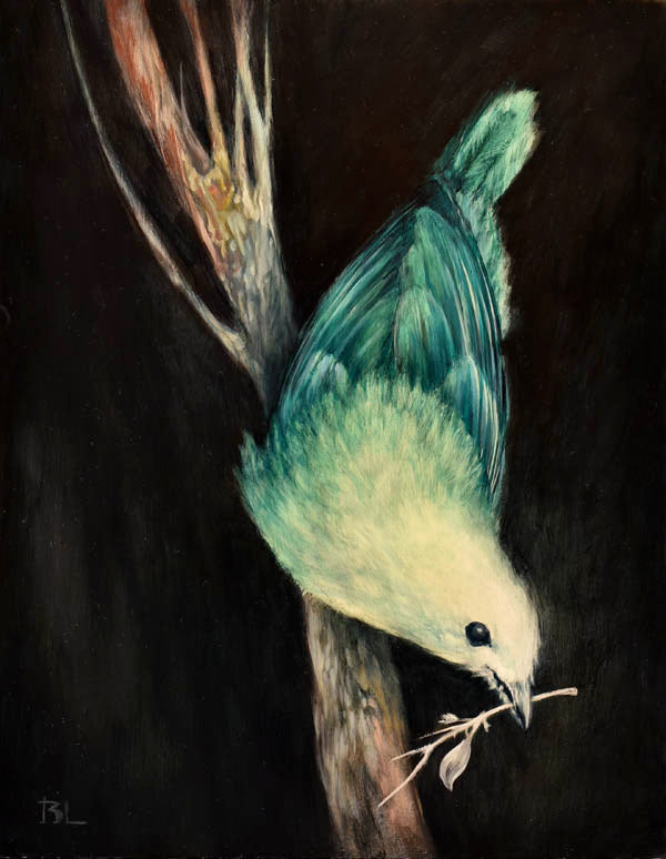 Brin Levinson - Blue Green Tanager