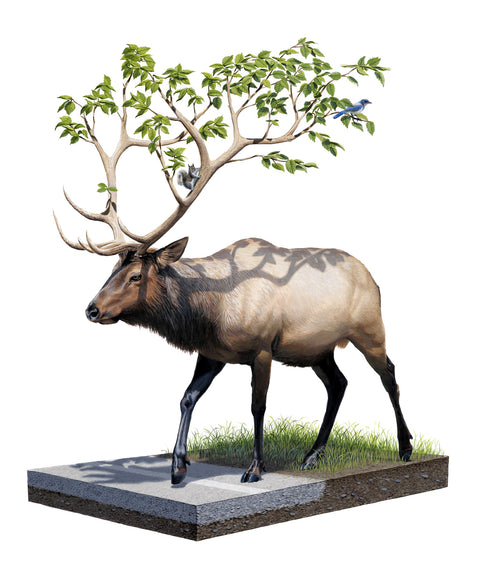 Josh Keyes - Roaming Woods