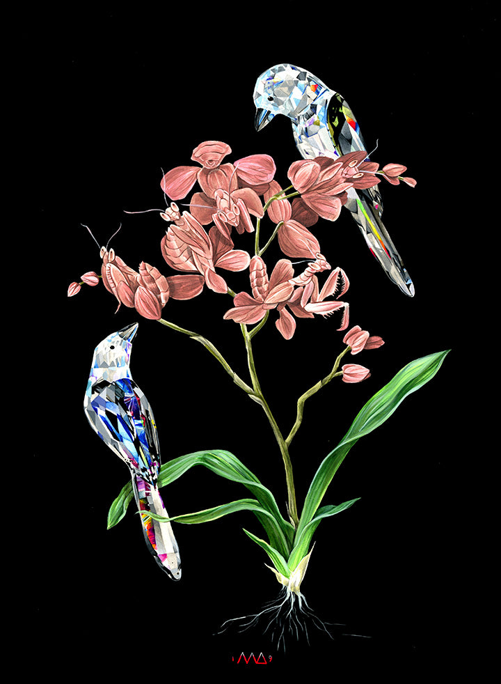 Meg Adamson - Crystal Magpies & Mantis Orchid
