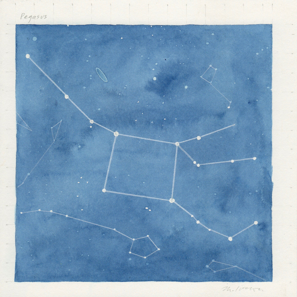 Mary Iverson - Pegasus (star map)
