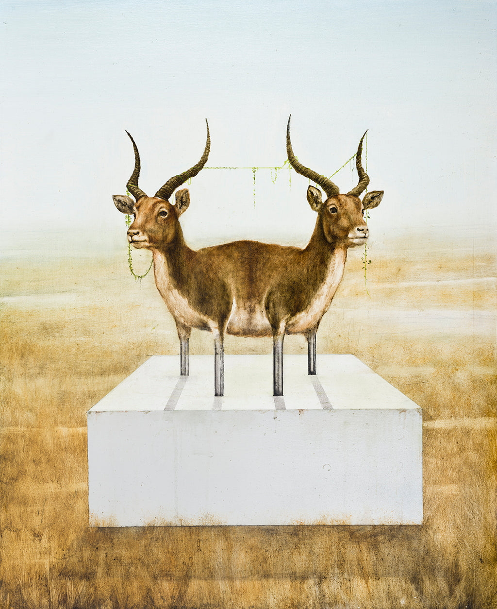 Kevin Earl Taylor - Two Headed Gazelle Print