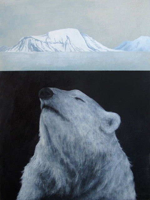 Amy Ruppel - Arctic Shift