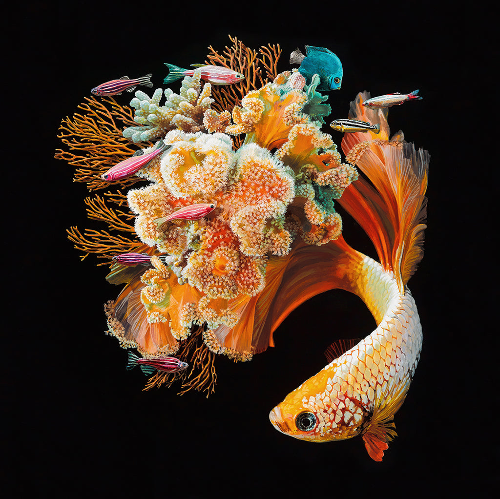 Lisa Ericson - Bloom