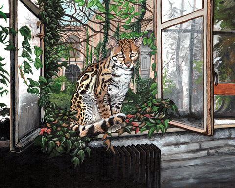 "Neil M. Perry - ""Margay"""