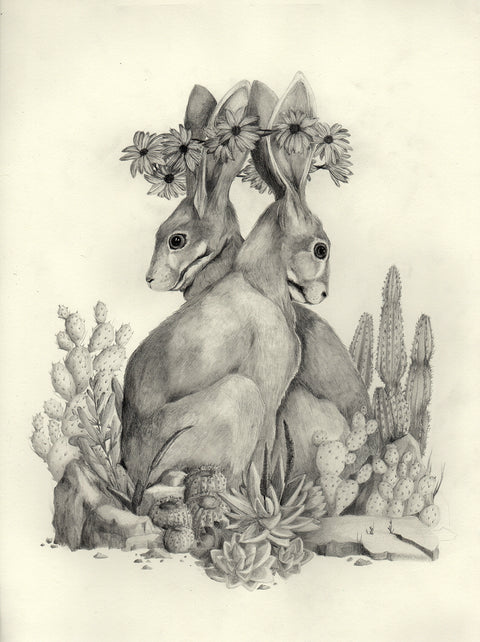 Susannah Kelly - Riverine Rabbit