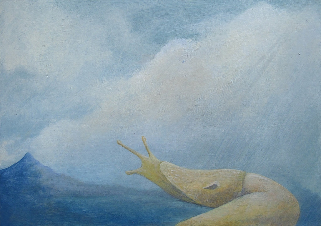 Amy Ruppel - Slug, Mountain Dawn
