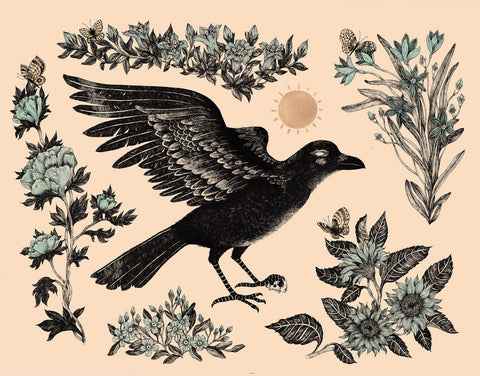 Jennifer Parks - The Raven Who Stole the Sun