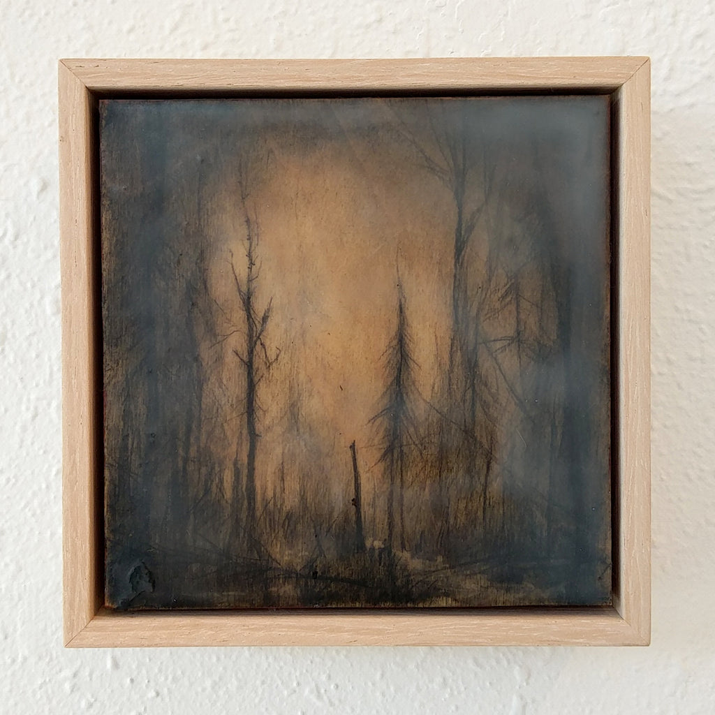 "Amanda Kavanagh - ""Winter Woods 1"""
