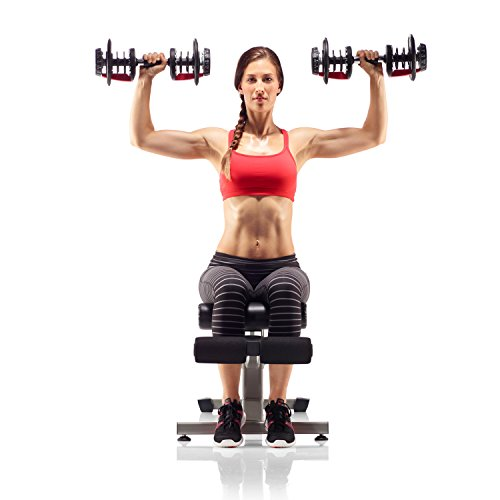 077 Sunny Health /& Fitness Squat Assist Row-N-Ride Trainer for Squat Exercise and Glutes Workout Sunny Distributor Inc NO